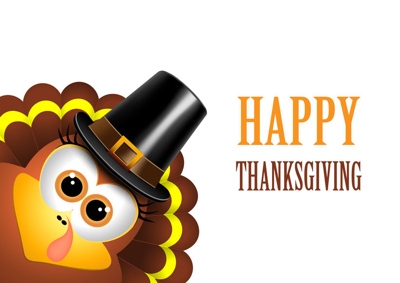Card for Thanksgiving Day. Turkey in a pilgrim hat. Vector.